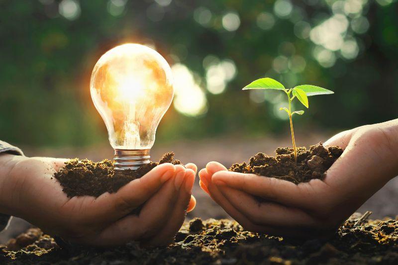 innovación sostenible y ecológica